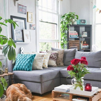In Canada, a Dog Lover's Century-Old Rental