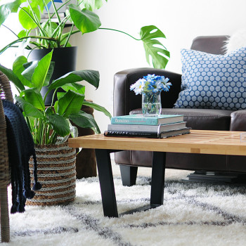 Cobalt Blue Hues and Playful Style Rule This Canton, MA Apartment