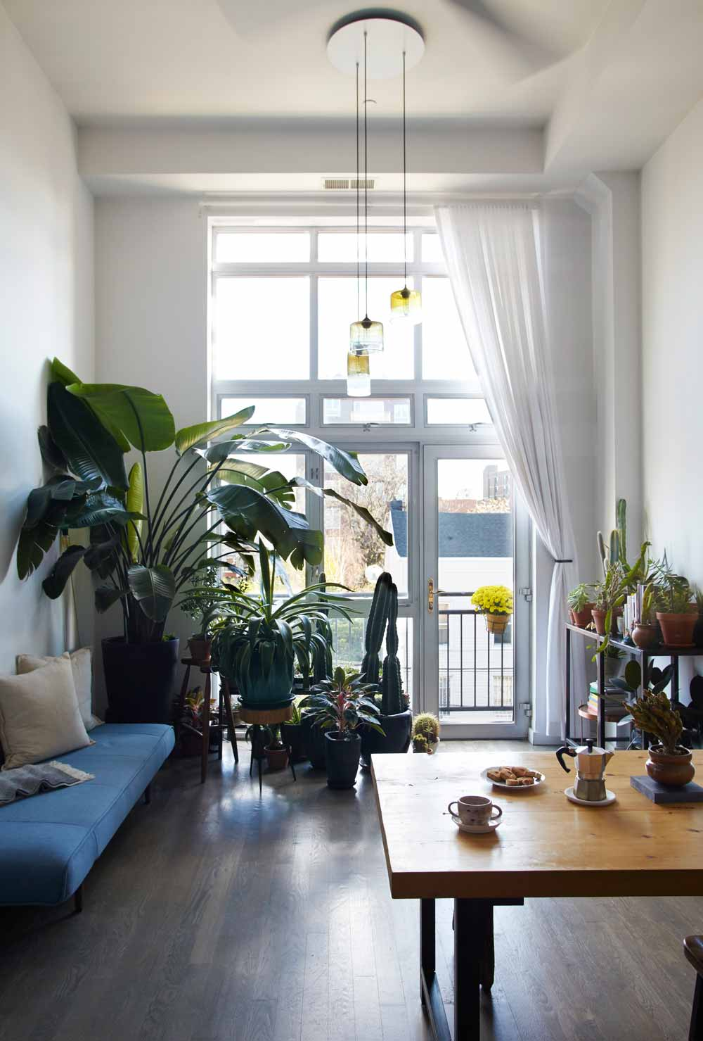 An Airy Modern Greenhouse in Brooklyn, on Design*Sponge