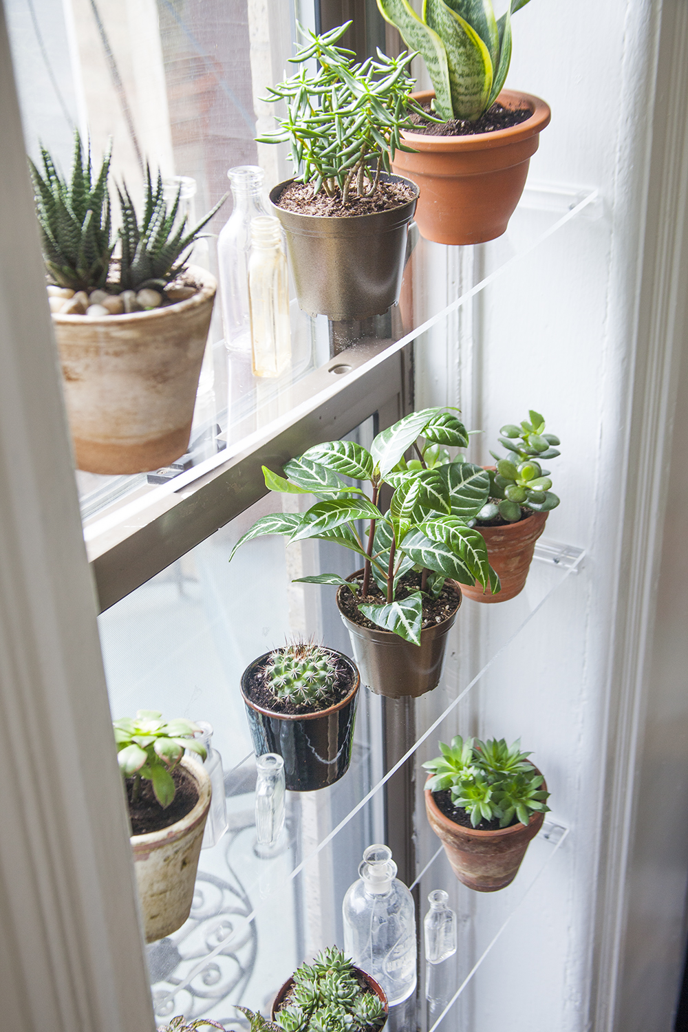 Diy floating window shelves design sponge - How to hang plants in front of windows ...