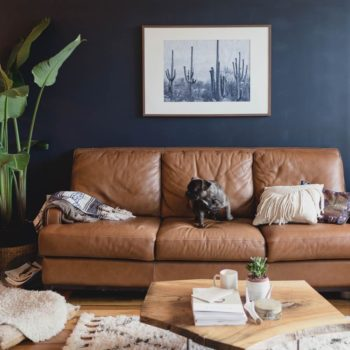 10 of Our Favorite Brooklyn, NY Interiors