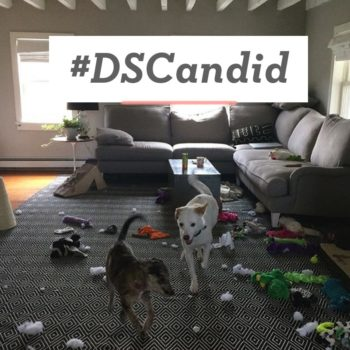 #DSCandid + Moments from Daily Life