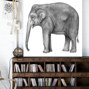 Lions, Tigers, Bears & Beyond: 15 Rooms That Celebrate Animals in Artwork