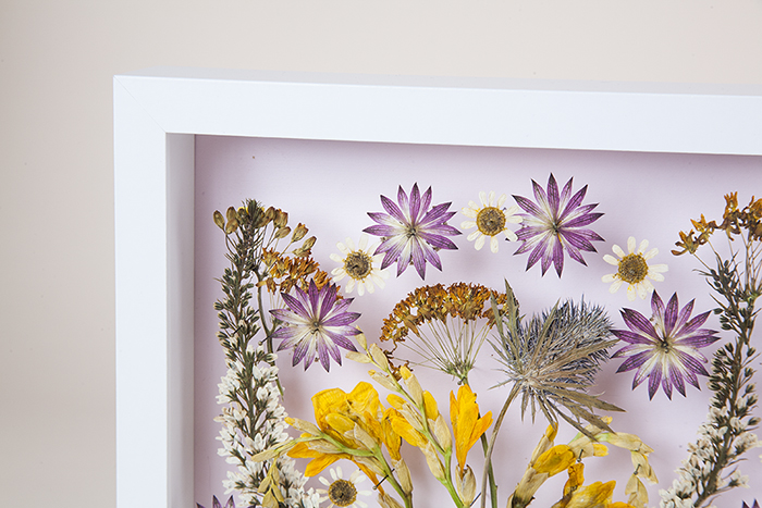 DIY Pressed Flower Wall Art – Design*Sponge