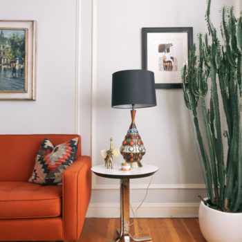 14 Ways to Add Texture and Color to a Room with Cacti