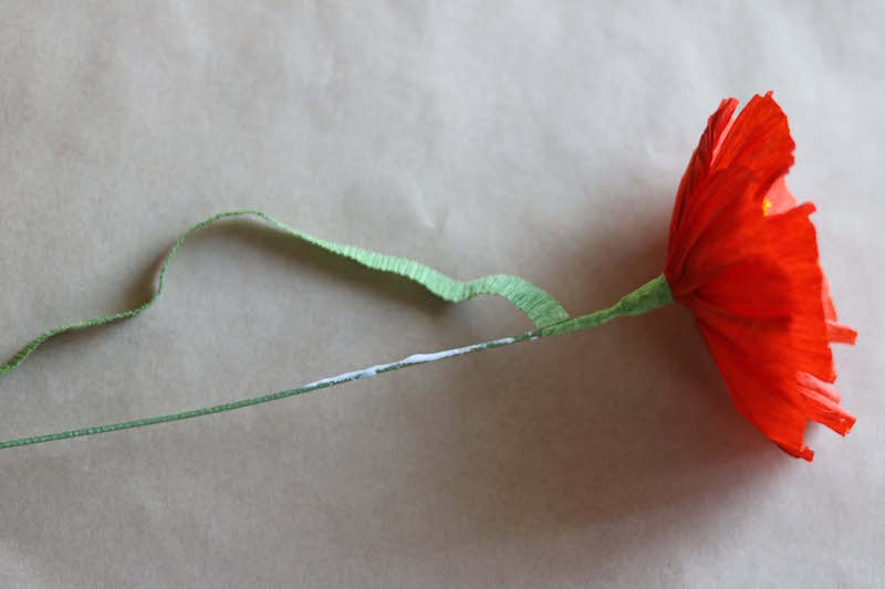 Paper poppy tutorial by Kate Alarcón for Design*Sponge.com