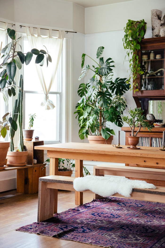 Alea And Peter's Plant-Filled Portland Home On Design*Sponge
