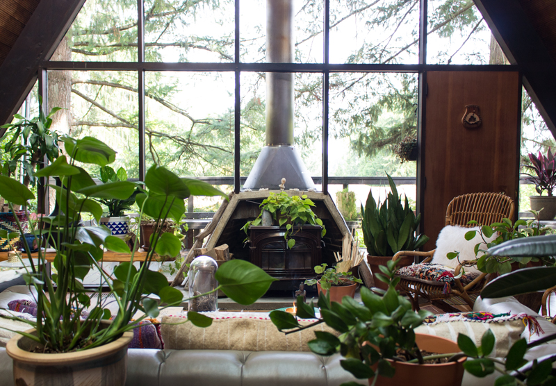 Anna and Srijon's Portland A-Frame With Anna's Plant Collection On Design*Sponge