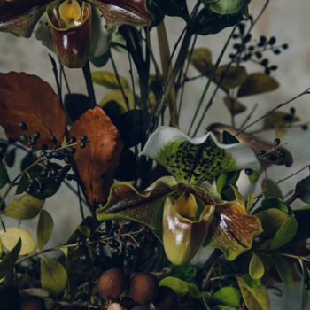 Winter Floral Arrangement with Fungi and Roses