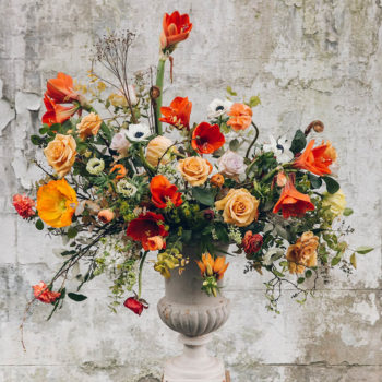 Late Winter Florals by Swallows & Damsons + Best of the Web