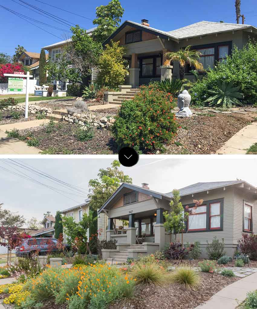 A Water-Wise Garden Replaced The Overgrown Front Yard On Design*Sponge
