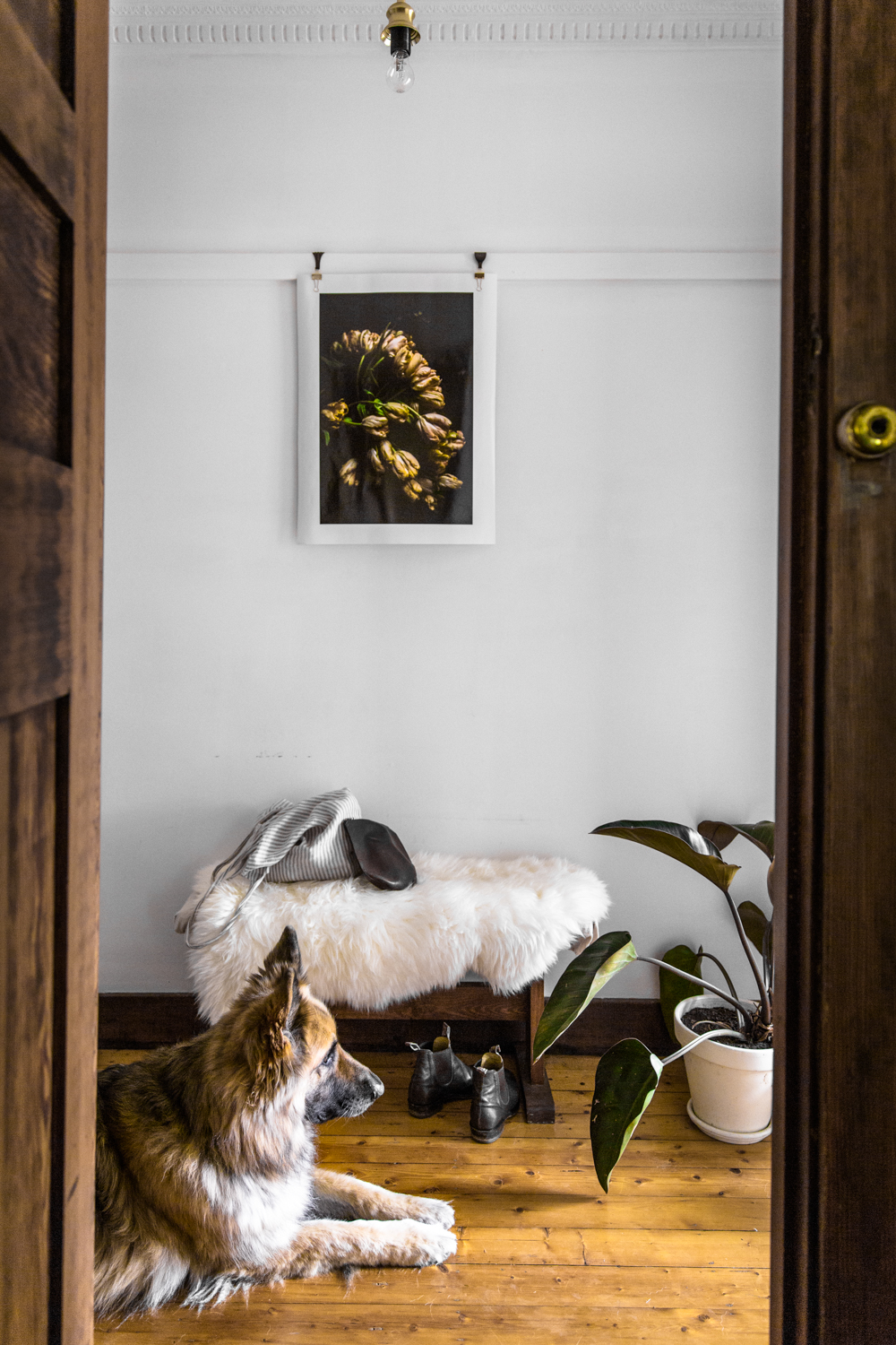 An Australian Home Built for Fostering Creativity via Design*Sponge