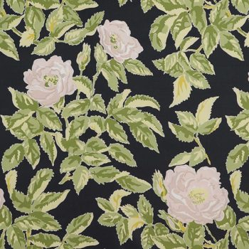 Desktop Downloads from Schumacher: Manor Rose