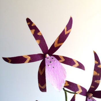 DIY Paper Spider Orchids