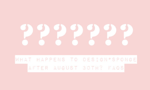 """What Happens to Design*Sponge After August"""" FAQs (Answered)"""