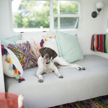 Top 20 Before & Afters of All Time: #17 A 188-Square-Foot Camper Makeover