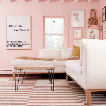 Before & After: Grace and Julia's Pink Living Room Makeover