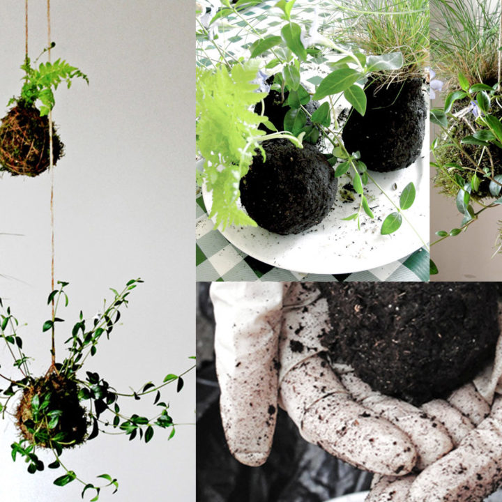 "Top 20 DIY Projects of All Time: #5 ""Kokedama"" String Garden"