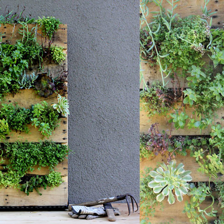 Top 20 DIY Projects of All Time: #8 Recycled Pallet Vertical Garden