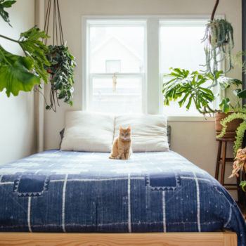 Top 20 Home Tours of All Time: #3 A 1910 Portland Foursquare for a Florist and Barista
