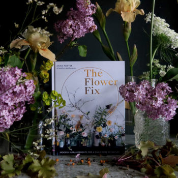 <em>The Flower Fix</em> by Anna Potter of Swallows and Damsons